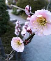 07-03-04_15-39.jpg