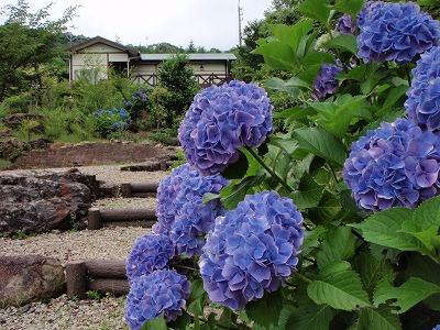 2008_0619_133010AA.jpg