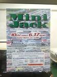 mini-jack