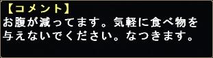 mhf_20100214_211102_564.jpg