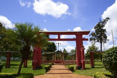 Yguazu colonia Japonesa