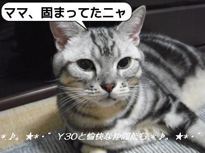 20090825_192119.jpg