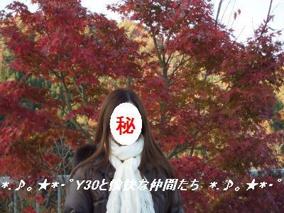 DSCF2324_convert.jpg