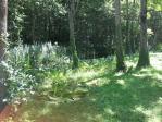 大沼湖畔の湿原地