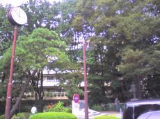 町田市役所(2008.10.3)9