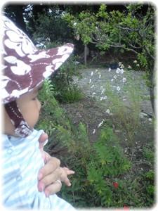 _2008.9.26sannpo 002