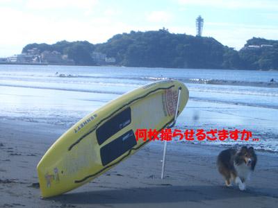 江ノ島をバックに