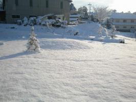 snowday_1