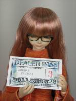 DS28_DealerPass.jpg