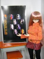 Nichimo_Fairlady_SR311.jpg