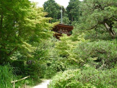 浄瑠璃寺三重の塔
