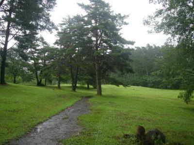 姫神山一本杉キャンプ場