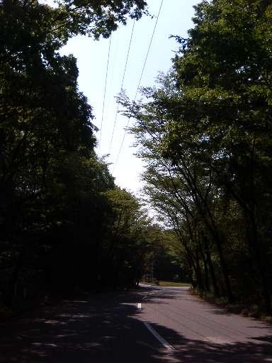 road070503.jpg