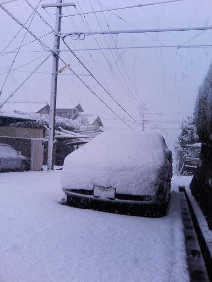 snow07.01.07at10.jpg