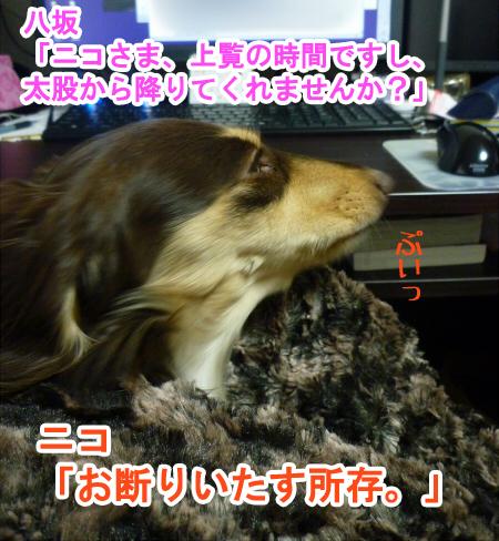 2011_0301_00.jpg