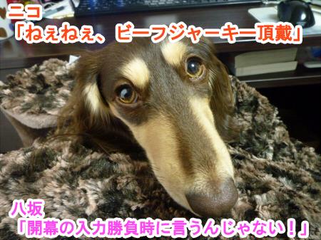 2011_0301_01.jpg