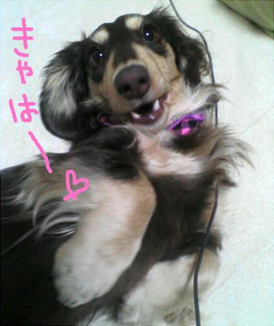 2011_0427_020.jpg