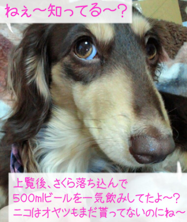 2011_0502_033.jpg