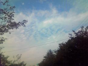 秋の空2010