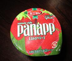 パナップ01