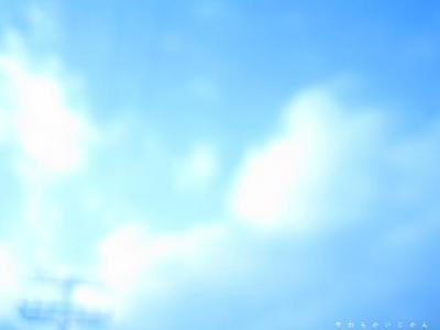 20061114135913.jpg