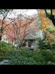 和歌山城にて