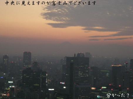 なんと富士山が