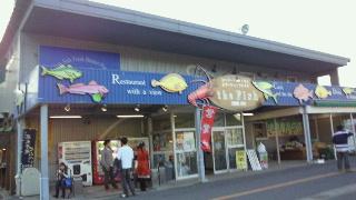 20101107the fish昼!