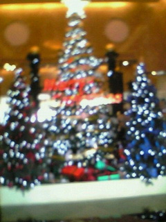 20101116ニューオータニのツリー