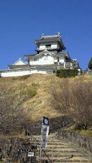 20110114掛川城2