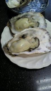 20110204焼き牡蠣