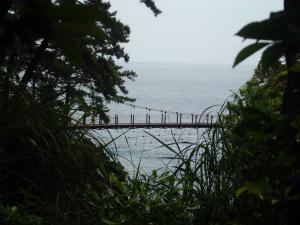 城が海岸20110606155249