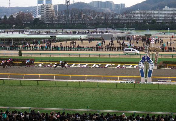 2.21東京競馬場