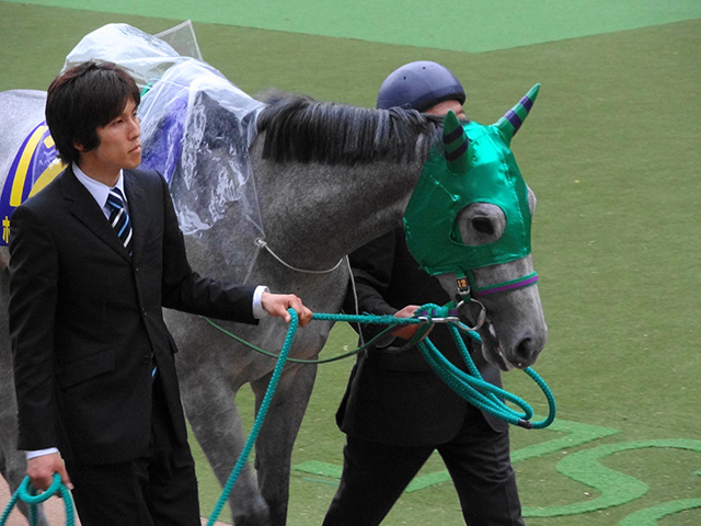 第72回優駿牝馬観戦04