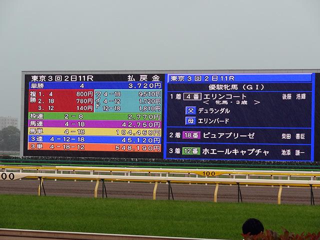 第72回優駿牝馬観戦10