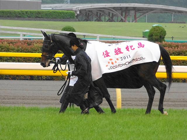 第72回優駿牝馬観戦13