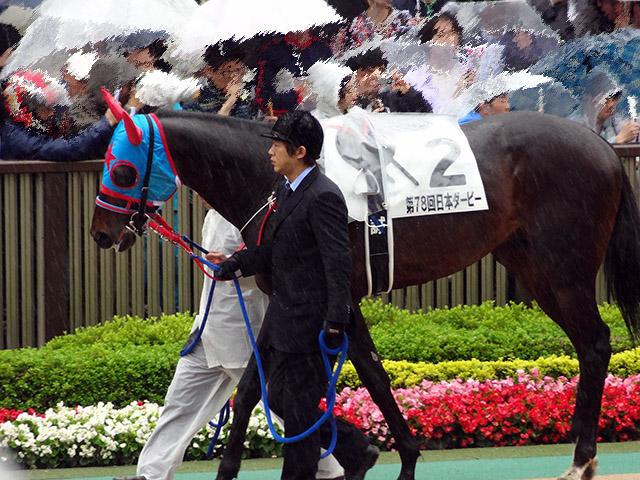 第78回 東京優駿観戦07