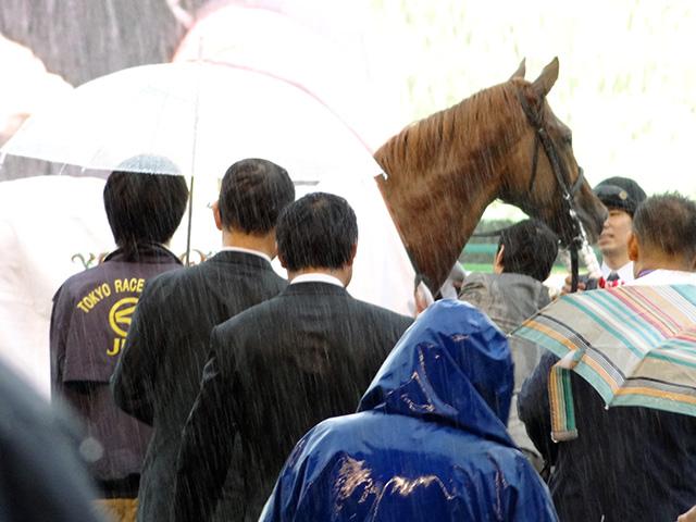 第78回 東京優駿観戦19