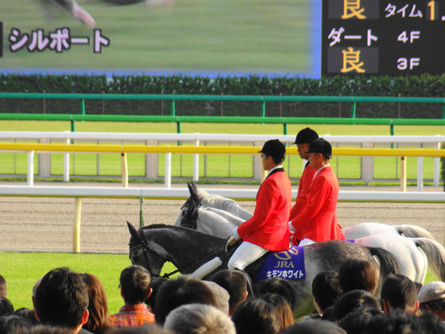 2011毎日王冠11