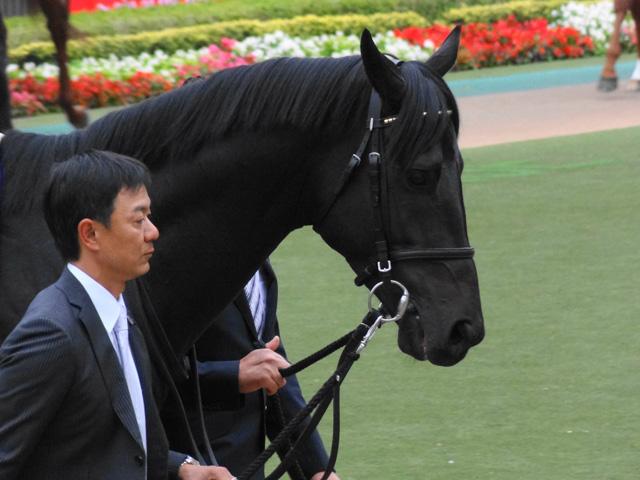 天皇賞秋201107