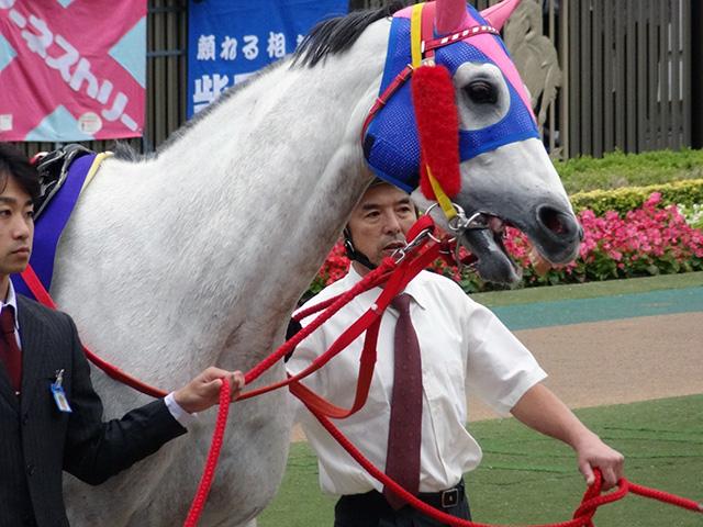 天皇賞秋201108