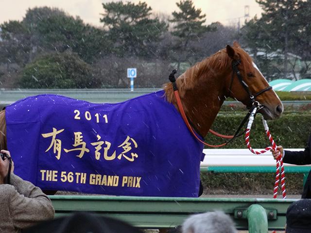 有馬記念1117