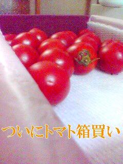 トマトの箱買いなんて初めてだよ