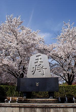 人間将棋2009_0419_02.jpg