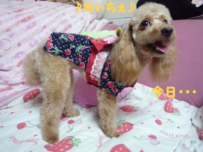 夏・・・浴衣②