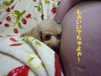 みぃ&こぉ