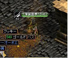 yuni.jpg