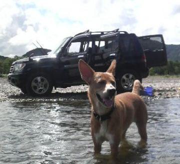 洗車完了(v ゝ`ω・)ブイッ!