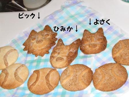 2009.yuki 192