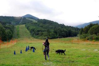 初キャンプ in いなかの風 ~ 八ヶ岳ワンワンパラダイス(17)